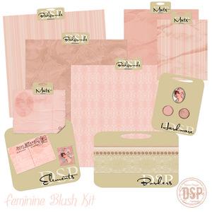 08_feminine_blush_kit_sampl